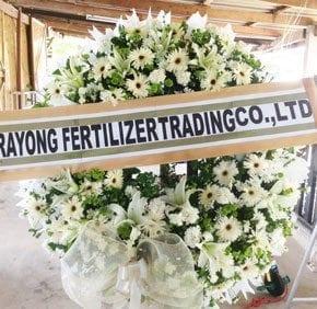 ร้านพวงหรีดวัดเขาโบสถ์ บางสะพาน ประจวบีรีขันธ์ จากRayong Fertilizer Trading Co., Ltd