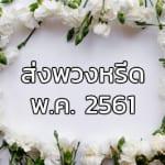 Fi May61