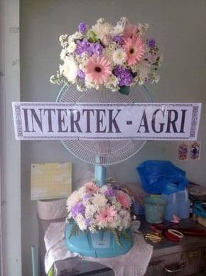 ร้านพวงหรีดวัดโพธิ์ ชลบุรี พวงหรีดจาก Intertek Agri