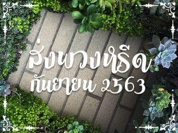 Fi Reed Thai 08 2020