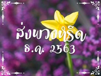 Fi Reed Thai12 2020