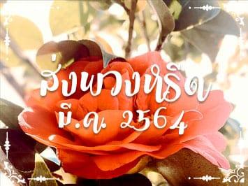 Fi Reed Thai 2021 3