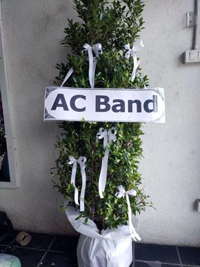 ร้านพวงหรีดวัดผาสุกมณีจักร นนทบุรี พวงหรีดจากac Band