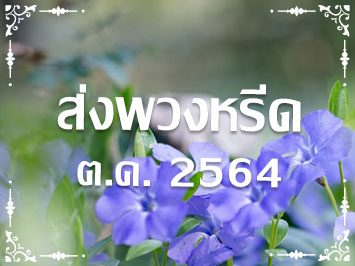 Fi Reed Thai 10 2021